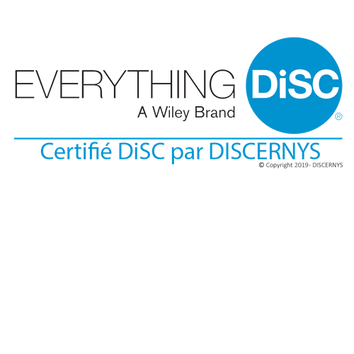 DISC Outil PERSPECTIVE Outplacement